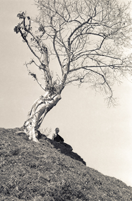 "Ann McNeil (Anila Ann) under a tree on ""astrologer's hill"", Kopan Monastery, Nepal, 1972."