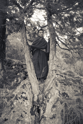 Lama Zopa Rinpoche posing in a tree, Lawudo Retreat Centre, Nepal,1972.