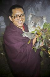 (10227_ng-2.psd) Lama Zopa Rinpoche with koala bear in Adelaide, Australia, 1983. Photos taken and donated by Wendy Finster.