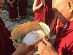 Lama Zopa Rinpoche blessing two rabbits at Osel Labrang.