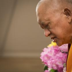 Lama Zopa Rinpoche teaching at the Light of the Path retreat, North Carolina, USA, May 2014. Photo: Roy Harvey.
