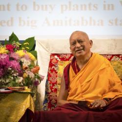 Lama Zopa Rinpoche at Light of the Path retreat, North Carolina, USA, May 2014. Photo: Roy Harvey.