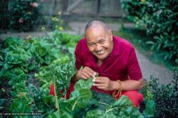 (01836_ud-3.jpg) Lama Yeshe gardening in Berkeley, CA, 1980. Jon Landaw (photographer)