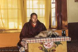 (04643_pr-3.JPG) Lama Yeshe with Yeshe Senge, his dog, Tushita Retreat Centre, Dharamsala, India, 1980.