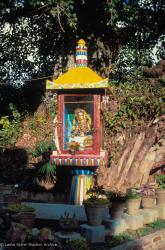 (09598_sl.JPG) Tara statue installed in the glass house overlooking the pond, Kopan Monastery, Nepal, 1976.
