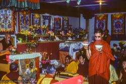(09970_sl.JPG) A cycle of pujas were done for Lama Yeshe before the formal cremation, Vajrapani Institute, California, 1984. Photo by Ricardo de Aratanha.