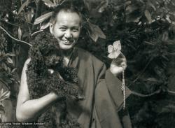 (10524_pr-3.tif) Lama Yeshe and Bobik in Beatrice Ribush's back yard, Melbourne, AU,1974. Photo by Dorian Ribush.