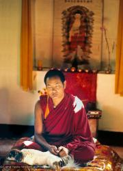 (10529_ud3.jpg) Lama Yeshe meditating with his dog Dolma at the Kopan Monastery, 1971. Photo by Fred von Allmen.