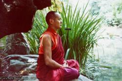 (12533_pr-2.psd) Lama Yeshe meditating in the botanical gardens, Berkeley, California, 1974. Photo donated by Judy Weitzner.