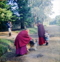 (16735_ng.tif)  Lama Yeshe and Yeshe Khadro (Marie Obst) visiting the Dandenong Ranges near Melbourne, Australia with Peter Stripes and his two eldest children, 1976.