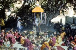 (16738_ng.tif) Installing the Tara statue, Kopan Monastery, Nepal, 1976.