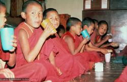 (16767_sl.psd) Mount Everest Center students in the gompa (shrineroom), Kopan Monastery, Nepal, 1976.
