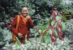 Lama Yeshe in Vancouver botanical gardens, 1978. Photo courtesy Pam Cowan.