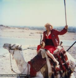 (21957_pr-3.tif) Lama Yeshe riding a camel in Giza, an Egyptian city on the west bank of the Nile, near Cairo, 1983.