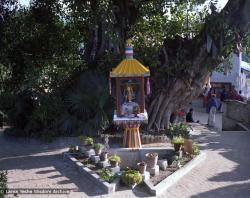 (22859_ng.tif) Tara Pond at Kopan Monastery, Nepal, 1979.