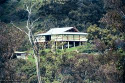 (37335_ng.psd) The Chenrezig Institute gompa (meditation hall), 1975. From the collection of images of Lama Yeshe, Lama Zopa Rinpoche and the Sangha during a month-long course at Chenrezig Institute, Australia.