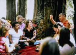 (39354_ud-3.psd) Lama and students on Vajrapani land, CA, 1977. Lama asked where the property boundary was and went running up to the highest point on a steep ridge. In some places the land was almost vertical. Lama gave a teaching then and there in a small redwood grove on the property. Walter Klopfenstein in purple shirt. Carol Fields (donor)
