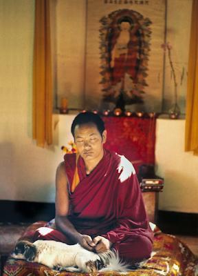 Lama Yeshe meditating with his dog Drolma at Kopan Monastery, Nepal, 1971. Photo: Fred von Allmen.