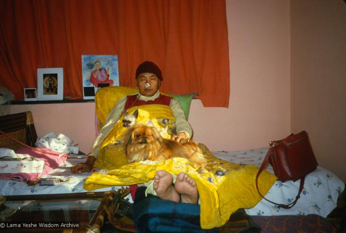 Lama Yeshe in Delhi shortly before he was brought to America for treatment of his heart condition. Photo by Lama Zopa Rinpoche.