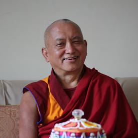 Lama Zopa Rinpoche in Delhi, India, January 2009. Photo: Ven. Roger Kunsang.