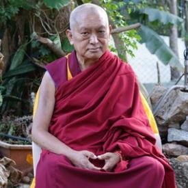 Lama Zopa Rinpoche in the garden at Osel Labrang, Sera Je Monastery, India, December 2015.  Photo: Ven. Roger Kunsang.